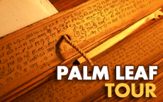 Palm Leaf Tour in South India