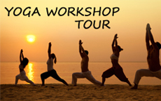 Yoga Workshop Tour in South India